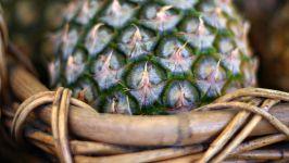Как растет ананас?
