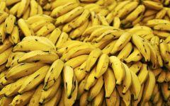 Желтые бананы, обои фотография  фото