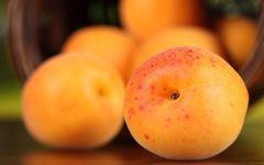 Картинки абрикос