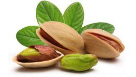 Плоды фисташкового дерева
