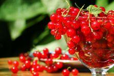 Красная смородина фото