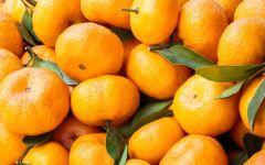 Мандарин (Citrus reticulata)