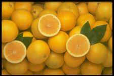 Хочешь сладких апельсинов?