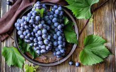 Как садить виноград?