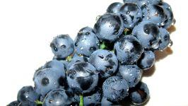 Темный виноград фотография