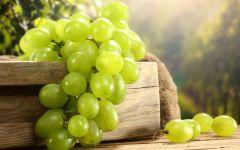 Сорт зеленого винограда