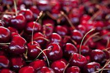 Красная вишня черешня
