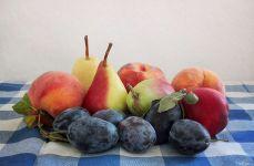 Груши, абрикосы и сливы