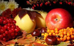 Орехи, ягоды и фрукты