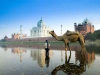 Мальчик с верблюдом (Индия) фото обои
