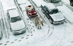 Припаркованный олень Санта Клауса