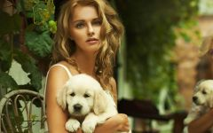 Красивая девушка и щенок голден ретривера