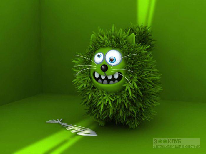 Бешенный зеленый кот, прикольная смешная картинка рисунок