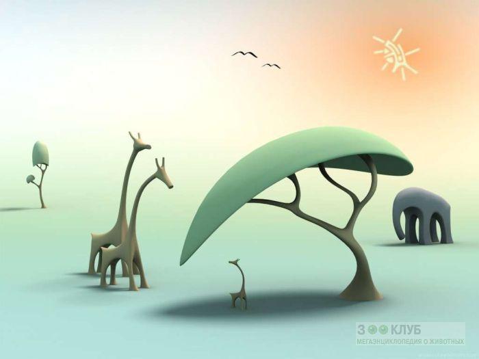 Жирафы и слон 3D, прикольный рисунок смешная картинка