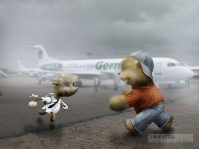 Медвежонок встречает ежика в аэропорту, прикольный рисунок смешная картинка для детей