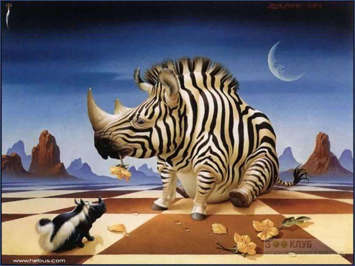 Что будет, если скрестить носорога с зеброй или со скунсом?, прикольное фото смешная картинка
