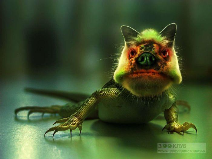 Зеленый ящеро-монст, прикольное фото смешная картинка