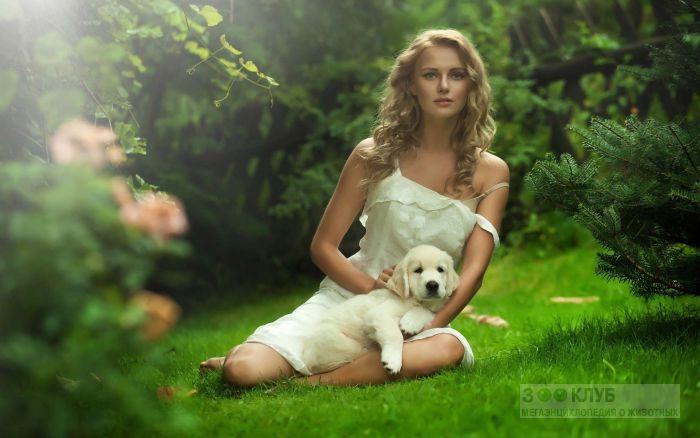 Девушка на лужайке со щенком золотистого ретривера, фото фотография картинка обои