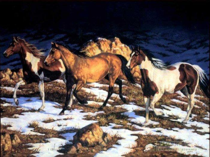 Лошади в горах, фотообои, фото обои, фотография картинка рисунок